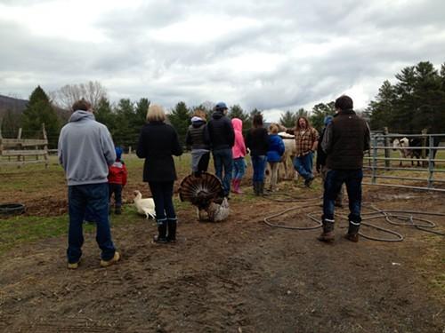 Mike Stura leading a tour at the Woodstock Farm Animal Sanctuary