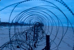 1969-barbed_wire-c600.jpg