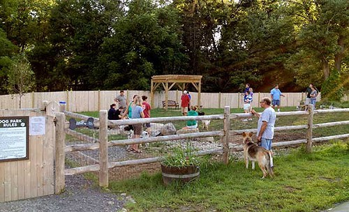 Top Five on Friday: Dog Parks of the Hudson Valley   Daily Dose