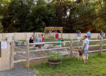 Top Five on Friday: Dog Parks of the Hudson Valley