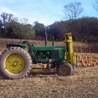 Pumpkin Picking at Gill's Farm in Hurley