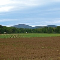 Rondout Valley Growers Association