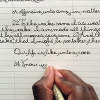 Portfolio: Laura Glazer Phillip went through 496 pens. Laura Glazer