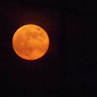 Lifting the Veil: Lunar Eclipse and Libra Full Moon