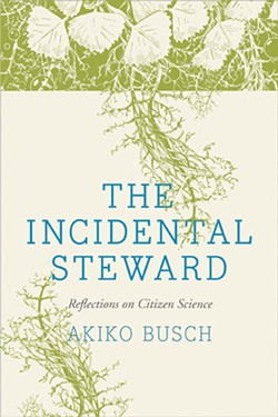 books_the-incidental-steward.jpg