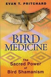 books-bird-medicine_pritchard.jpg