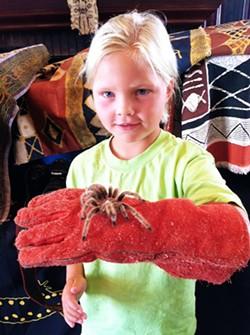 efe7b53d_animal_embassy_program_participant_holding_a_tarantula.jpg