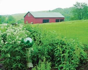 Stone and Thistle Farm in East Meredith hosts weekly meals at its onsite farm-to-table restaurant, Fable.
