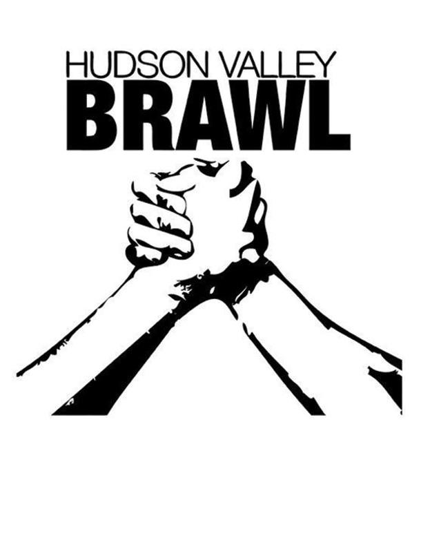 sl_brawl.jpg