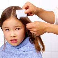 Super Lice, Coming Soon to a School Near You