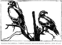 FLAVIA BACARELLA - Tawny Eagles, Maasai Mara, Kenya