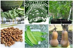 PHOTO COURTESY: AWAYTOGARDEN.COM - The Best Seeds for Local Gardening are Local Seeds