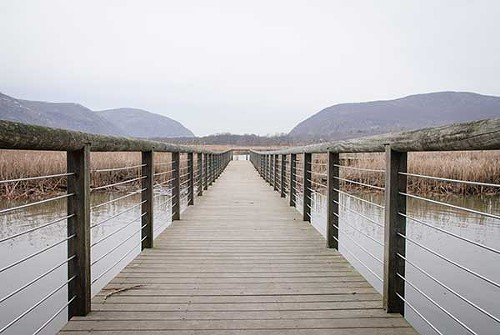 The Constitution Marsh boardwalk in Cold Spring.
