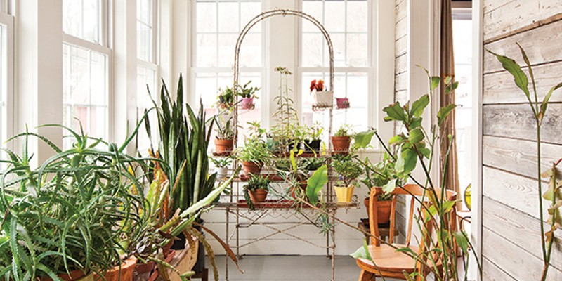 Jeffrey Adkisson's Stockport Salvage The porch hosts a plethora of plants and a long bench from Adkisson's grandfather's one-room schoolhouse