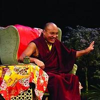 What the Karmapa Said