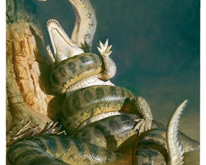 Titanoboa (Titanoboa cerrejonensis) by James Gurney.