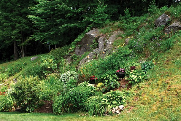 A rock garden in The Hills. - LARRY DECKER