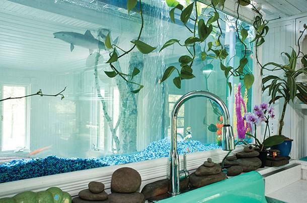 O'Sullivan and Mason have installed a wall aquarium behind their kitchen sink. - DEBORAH DEGRAFFENREID