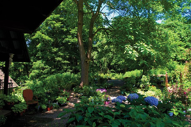 Shade plants in the nursery at Victoria Gardens in Rosendale - LARRY DECKER