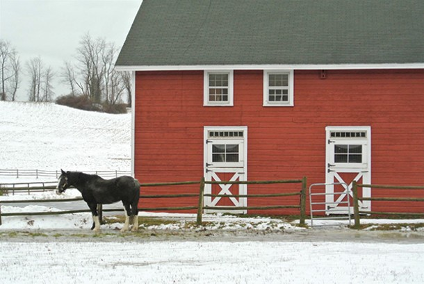 Rural beauty in Amenia. - PHOTOS BY JOHN GARAY