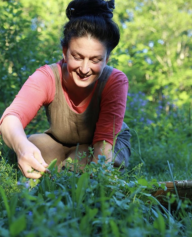 Dina Falconi, clinical herbalist and author, goes over some tips about foraging for common April wild edibles. - DINA FALCONI