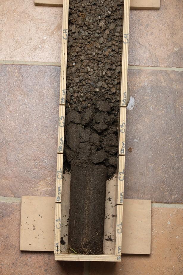 Soil core profile - MARTIN ADOLFSSON