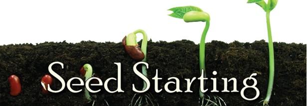 seed_starting.jpg