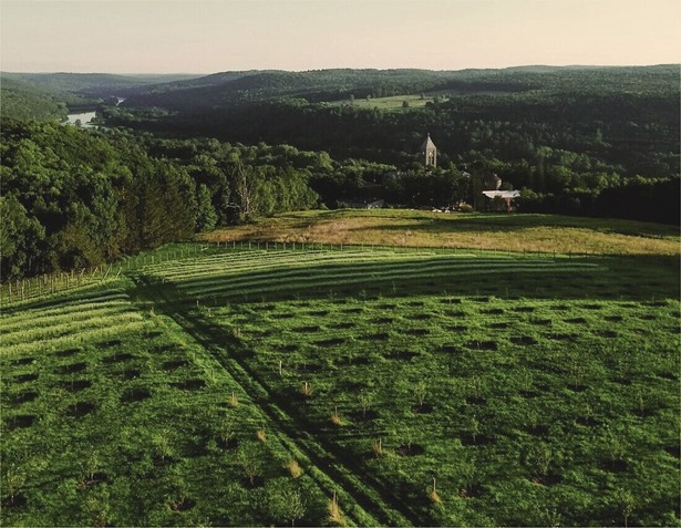 Seminary Hill a new lodging and craft cider producer in Callicoon.