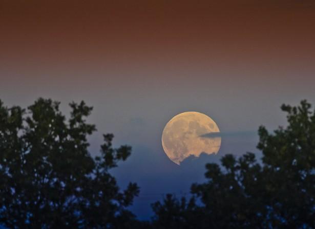 Harvest moon - PHOTO BY JON BUNTING