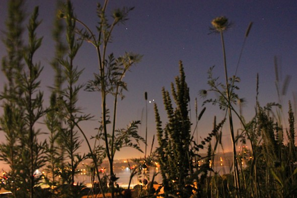 In this photo from July 1, Venus and Jupiter can be seen together in the evening sky; currently they are visible just before dawn. - AMANDA PAINTER