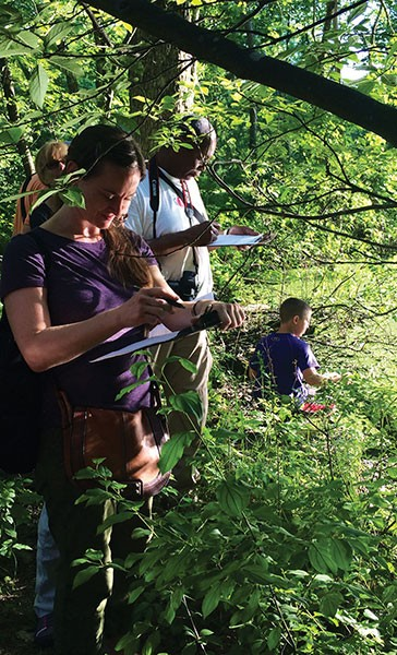 Hudson Valley phenology volunteers collect date for Nature's Notebook - KERISSA BATTLE