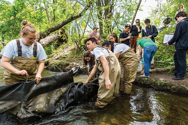Storm King School students work with NYDEC in the Quassaick Creek to help preserve the eel population.