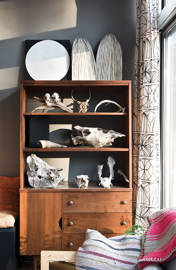 A collection of animal skulls and bones found in the surrounding woods is displayed in the living room corner. - DEBORAH DEGRAFFENREID