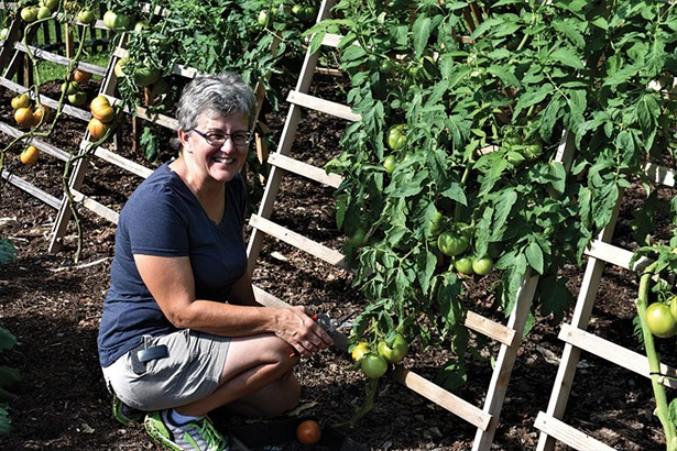 Horticulturist Susan MacAvery with the A-frame tomato trellis at the Locust Grove Heritage Vegetable Garden. - LARRY DECKER
