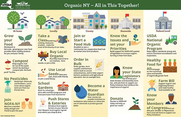 nofa-ny_what-can-i-do_infographic.jpg