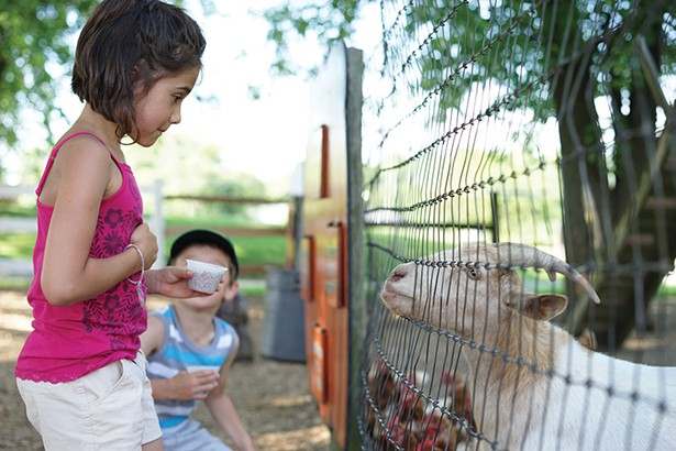 Mason and Samantha at Pennings Farm Petting Zoo in Warwick. - JOHN GARAY