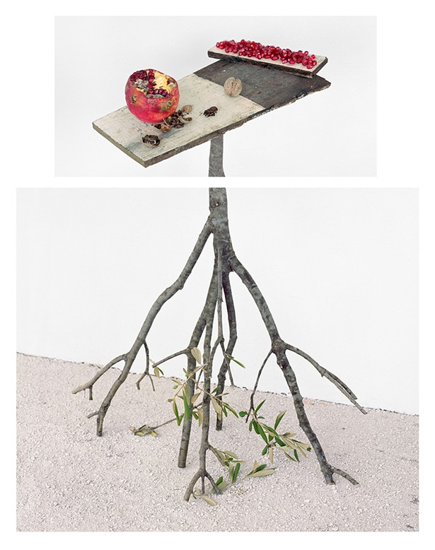David Halliday, Pomegranates and Walnuts, 2017, archival pigment print