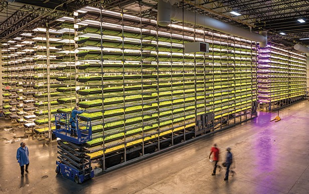 Newark's AeroFarms, the world's largest indoor vertical farm of its kind, will be participating in the East North East Green Tech Conference in Newburgh this month. - PHOTO: GEORGE STEINMETZ