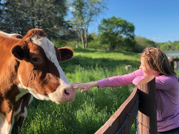 Kid-Friendly Places to Pet Animals in the Hudson Valley | Outdoors