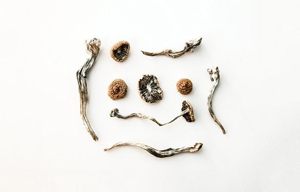 health_magic-mushrooms.jpg
