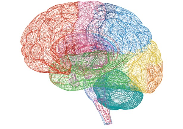 01_education_brain.jpg