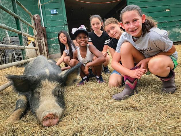 Kids' Attraction Spotlight: Catskill Animal Sanctuary