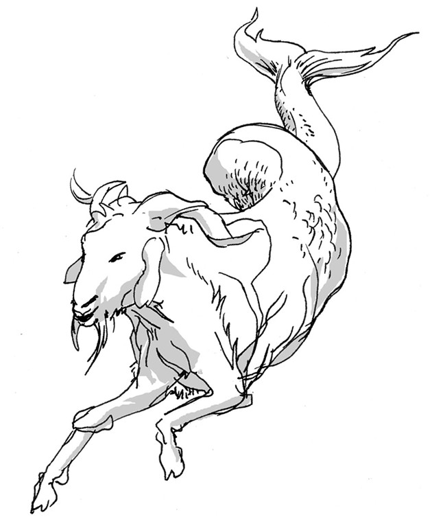 Capricorn for July 2016