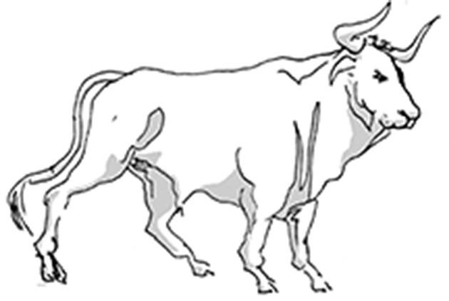 Taurus Horoscope for December 2017