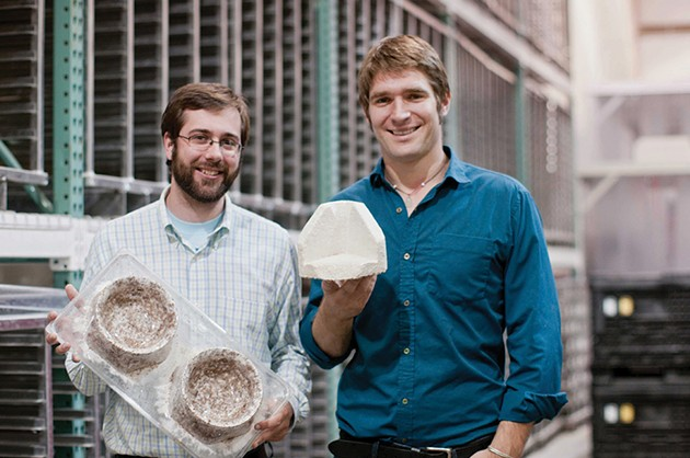 The Mycelium Revolution: Fungus-Powered, Eco-Friendly Design