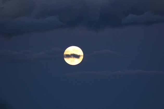 Surprise! It's a Wild-Card Full Moon