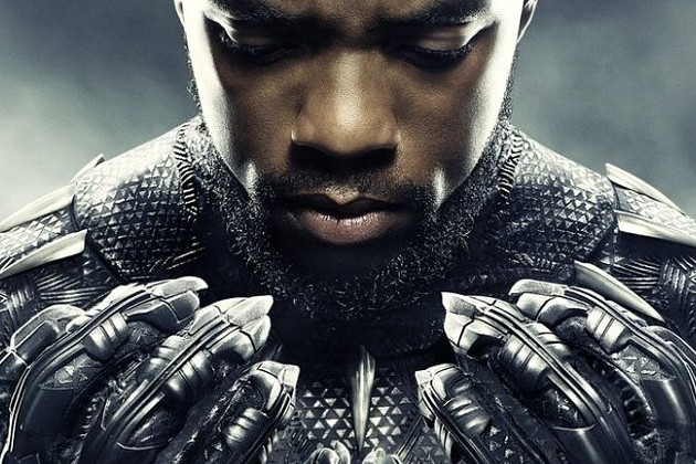 Black Panther Movie Takeover at the Hudson Valley Mall