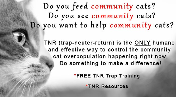Free Public TNR Training and Discussion