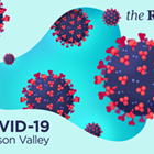 Daily Reporting on COVID-19 in the Hudson Valley