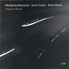 Album Review: Wolfgang Muthspiel/Scott Colley/Brian Blade | Angular Blues